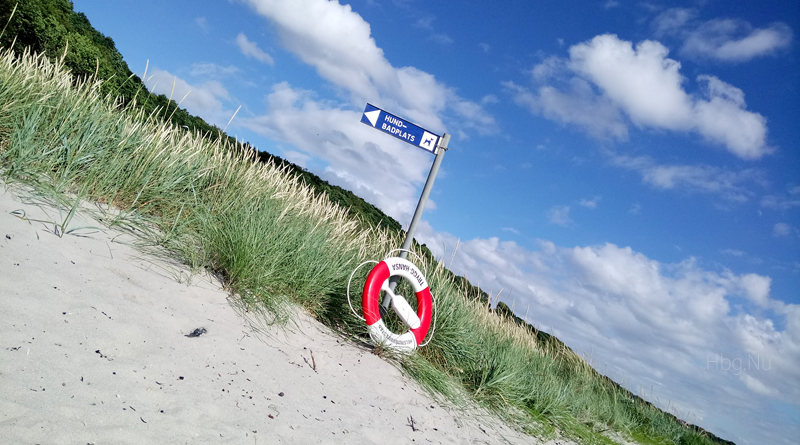 Hundbad – Helsingborg