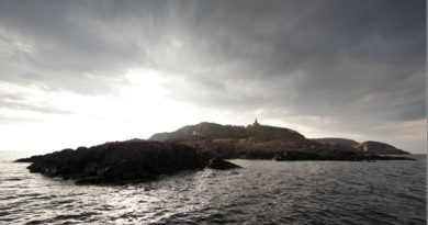Kullabergs naturreservat
