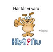 Hundvänligt Helsingborg HbgNu