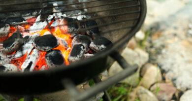 Eldningsförbud i Helsingborg