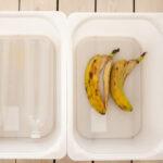 HbgHack – Bananflugor